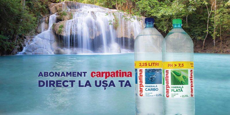 CARPATINA-Banner_1_v4
